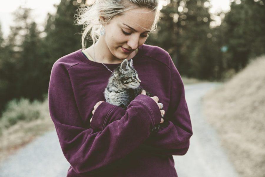 bonding with a Kitten