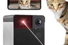 Pet Security